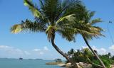 Small siloso beach 9  sentosa  aug 06